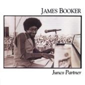 James Booker - Make a Better World