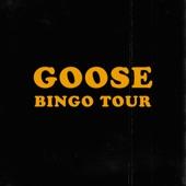 Goose - Beast Pose