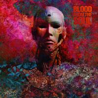 Blood From The Soul - DSM-5 artwork