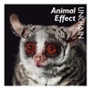Animal Effect by UNCHAIN