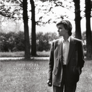 David Sylvian - Brilliant Trees (Remastered 2003)