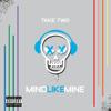 Take Two - Mind Like Mine artwork