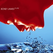 Boney James - You Don't Have To Go Home