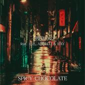 一度きりの (feat. 寿君, APOLLO & RAY)