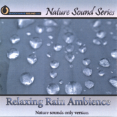 Relaxing Rain Ambience (Nature Sounds Only Version)