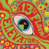 13th Floor Elevators - Reverberation (Doubt)