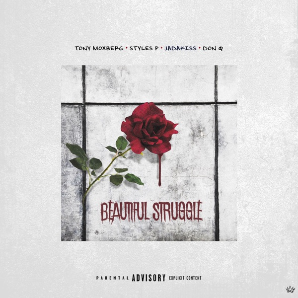 Beautiful Struggle (Remix) [feat. Styles P, Jadakiss & Don Q] - Single