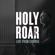 Chris Tomlin - Holy Roar: Live from Church