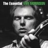 Icon The Essential Van Morrison