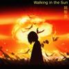 Dj Douyin Remix - Walking In the Sun artwork