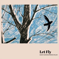 Let Fly by Danny Diamond & Brian Miller on Apple Music
