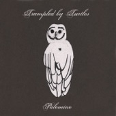 Trampled By Turtles - Victory