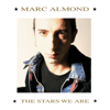 Marc Almond & Gene Pitney - Something's Gotten Hold of My Heart artwork