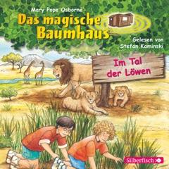 Im Tal der Löwen: Das magische Baumhaus 11
