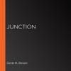 Daniel M Bensen - Junction artwork