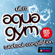 Various Artists - Ultra Aqua Gym 90s Hits Workout Compilation (15 Tracks Non-Stop Mixed Compilation for Fitness & Workout 128 Bpm / 32 Count)