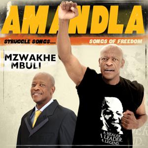 Mzwakhe Mbuli - Bayazisola