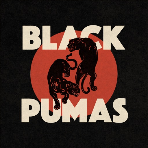 Art for Colors by Black Pumas
