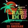 Raise em up feat Ed Sheeran Team Lit Mix Single