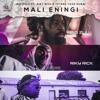 Big Zulu - Mali Eningi (feat. Riky Rick & Intaba Yase Dubai) artwork