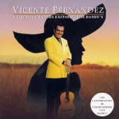 Vicente Fernández - Eternamente (Album Version)