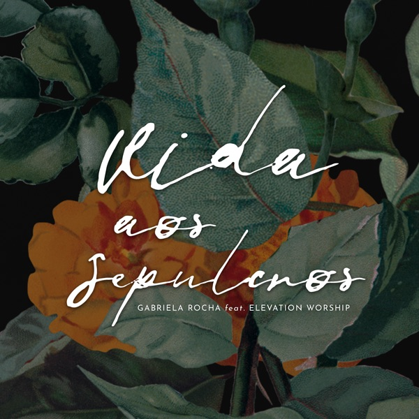 Vida aos Sepulcros (feat. Elevation Worship) - Single