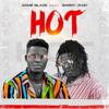 Acme BlaZe - Hot (feat. Barry Jhay) artwork