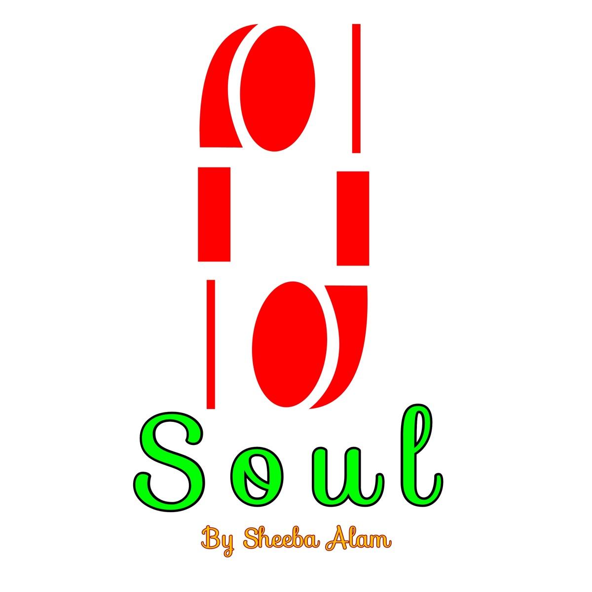 Soul feat Shahbaz Siddiqui - Single Sheeba Alam CD cover