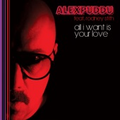 All I Want Is Your Love (feat. Rodney Stith) artwork