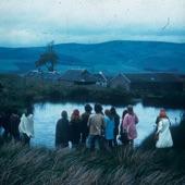 Wild Firth - Uptown