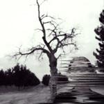 Madison Cunningham - Broken Harvest