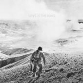 Love Is The King - Jeff Tweedy