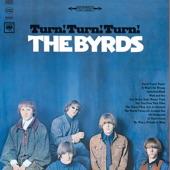 The Byrds - Stranger in a Strange Land (Instrumental)