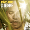 Fat Joe, DJ Khaled & Amorphous - Sunshine (The Light) artwork