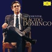 """Plácido Domingo - Verdi: Don Carlos / Act 1 - """"Fontainebleau! Forêt immense.."""""""