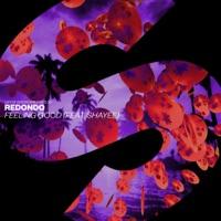 Redondo & Shayee - Feeling Good