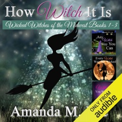 How Witch It Is: Wicked Witches of the Midwest, Books 1-3 (Unabridged)