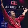 MTV Ao Vivo Arlindo Cruz Vol 1