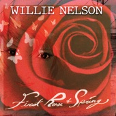 Willie Nelson - Yesterday When I Was Young (Hier Encore)