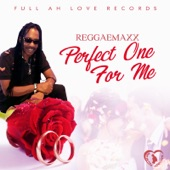Reggaemax - Perfect One for Me