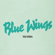Blue Wings - Wild Nothing