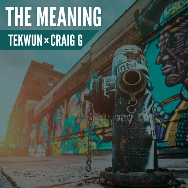 The Meaning - Single