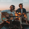 Endless Summer - Perfect (Live from Gasparilla Island) artwork