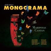 Mongorama - Como Fue
