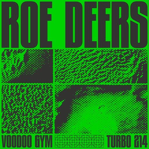 Voodoo Gym - EP by Roe Deers