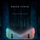 Amon Tobin - Heart of the Sun