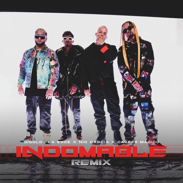 Indomable (Remix) - Single