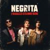 Negrita - I ragazzi stanno bene artwork
