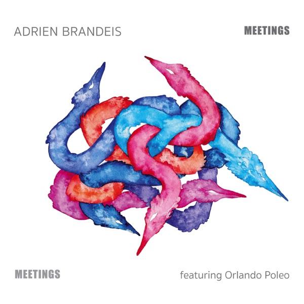 Adrien Brandeis– Meetings