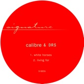 Calibre and DRS - living for